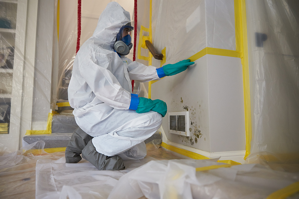 Mold Removal Procedures - ServiceMaster Restoration